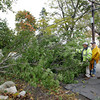 Gloucester: DPW workers, from left, Charlie Nicastro, Bob Matheson and Tom Middleton arrive on the scene of a tree that fell across Wheeler Street Friday afternoon. The tree pulled service lines off the house so the road remained blocked until National Grid arrived. Mary Muckenhoupt/Gloucester Daily Times