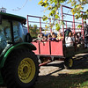 Allegra Boverman/Gloucester Daily Times. Hayrides were offered during Pumpkin Day at Cogswell's Grant in Essex on Saturday. The ride took participants to the pumpkin patch where they could select pumpkins. George Nolan of Rowley was driving the tractor.