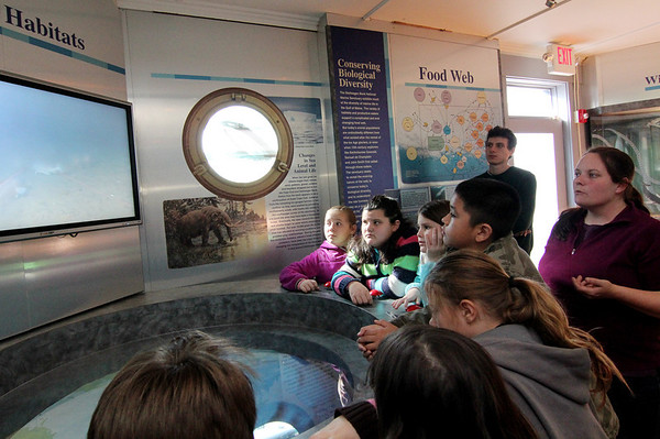 Allegra Boverman/Gloucester Daily Times. Maritime Gloucester education director Mary Kay Taylor, far right, talks with fourth graders from Veterans' Memorial Elementary School on Wednesday about Stellwagon Bank, sea life on the ocean floor, whales, mapping and other maritime topics while visiting the center on Wednesday morning. Curtis Sarkin, another educator, is at center back.