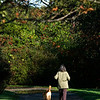 Jim Vaiknoras/Gloucester times; A woman walks her dog on a cool crisp autumn morning at the Allyn Cox Reservation in Essex Monday morning.
