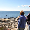Desi Smith/Gloucester Daily Times. This male finback whale, dead for some time, washed up on Saturday on the beach off Penzance Road in Rockport. This is the same dead whale that had been seen on islands in Boston Harbor two weeks ago. From left are Mary and Tom Eirich of Rockport, looking at the whale.