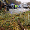 Allegra Boverman/Gloucester Daily Times. Willow branches fell on to Grant Circle, shown here, and the intersection of the 128 Bypass and Eastern Avenue on Monday during the hurricane.