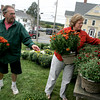 "Essex: Casey Leeds picks out the rust colored mums with the help of Bob Coviello at Joshua's Corner Antiques Thursday afternoon. 2000 mums were delivered to Joshua's Corner Antiques for business owners and residents to come pick up so the plants can be displayed around downtown Essex as part of the Essex Merchants Group's ""Mums the Word"" campaign to beautify downtown.  Mary Muckenhoupt/Gloucester Daily Times"