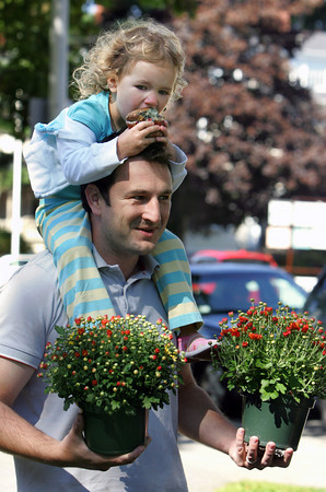 Manchester: Amina Cifric, 2, of Manchester eats a muffin on the shoulders of her dad, Mirza, after buying some mums at the plant sale held by the Manchester Mother's Club in front of Manchester Town Hall Saturday morning. E. Cressy and Son of Rowley donated the mums and all proceeds went to the Manchester Essex Scholarship Fund. Mary Muckenhoupt/Gloucester Daily Times