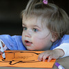 Essex: Hannah McGonigle, 20 months, colors in a pumpkin at the pumpkin craft table during the Fall Festival at the Cox Reservation Saturday afternoon.  Hannah's mother tried to help by gluing some yarn onto the pumpkin but Hannah quickly wiped that off and kept drawing. Mary muckenhoupt/Gloucester Daily Times
