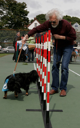 Gloucester: Per Hoel guides his dog, Ozzie, through an obstacle in the agility course during Cape Ann Animal Aid Dog Day at Stage Fort Park yesterday. All proceeds from the event benefit Cape Ann Animal Aid. Photo by Kate Glass/Gloucester Daily Times