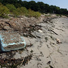Manchester: Trash and seaweed are all over White Beach in Manchester since the Conservation Commission has issued an order preventing beach cleanup. Photo by Kate Glass/Gloucester Daily Times