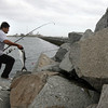Gloucester: Jose Castro carries a bluefish to his cooler while fishing off the Dog Bar Breakwater on Tuesday. It was Castro's first catch of the day. Photo by Kate Glass/Gloucester Daily Times