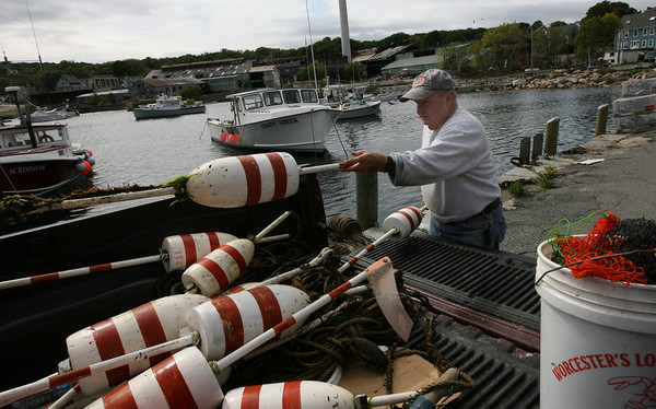 Rockport: Fred Nelson loads his lobster buoys into his truck at Pigeon Cove as he packs his gear away for the season. Photo by Kate Glass/Gloucester Daily Times
