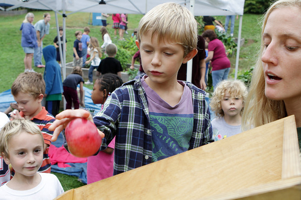 "Charlie Groleau, left, and The Food Project's Alison Woitunski, right, watch as Ian Buchanan drops an apple into an apple cider press at West Parish Elementary School's ""Harvest Day"" on Friday morning. David Le/Gloucester Daily Times"