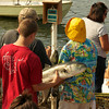 Gloucester:  Brain Cusick weighs-in the bluefish as they come in, at the BlueFish Tournament at Lanes Cove Sunday afternoon.   Desi Smith/Gloucester Daily Times. September 5, 2011