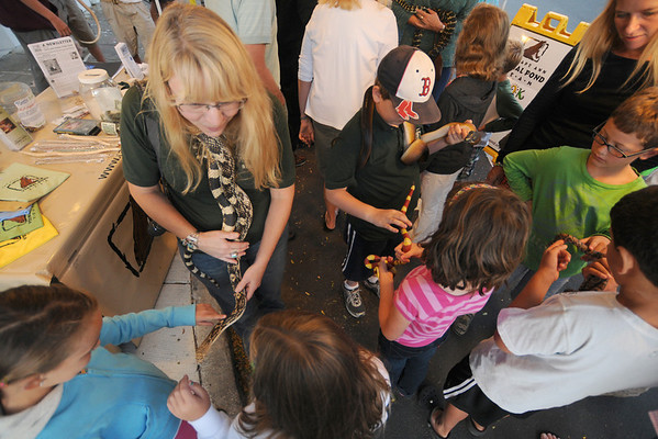 Jim Vaiknoras/Gloucester Times: Colleen Anderson of Cape Ann Vernal Pond Team show children a variety of snakes at the Downtown Gloucester Block Party Saturday night on Main Street.