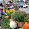 Allegra Boverman/Gloucester Daily Times. Sharon Elliott, of Flowerscapes by Maureen, all of Essex, adjusts the seasonal display they have created with mums and pumpkins at Woodman's in Essex on Friday. They do many displays of mums and pumpkins around Essex businesses and along the state highway at this time of year, in addition to the pocket park at the Village Restaurant.