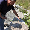 Allegra Boverman/Gloucester Daily Times. Don Peavey, the public works inspector for the city of Gloucester, talks about these large pieces of Gloucester granite curbing that they save and reuse when they are working on streets in Gloucester.
