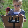 130918_GT_MSP_APPLES_01