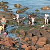 DESI SMITH/Staff photo.  Visitor of all kinds, people. ducks and seagulls flock to this rocky area on Front Beach Thursday afternoon in Rockport. Some looked their meal, and others just looked.   August 28,2014