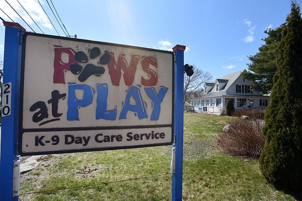 Paws at Play closed
