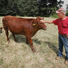 Drought Affects Area Farms