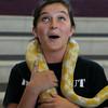 Snake Presentation