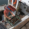 MIKE SPRINGER/Staff photo<br /> Lobsterman Jon Mondello of the Pisces lands his catch Friday at Captain Joe & Sons in Gloucester.<br /> 8/17/2018