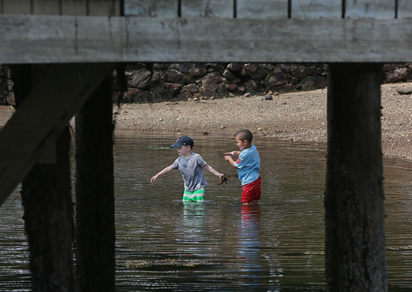 MIKE SPRINGER/Staff photo<br /> Jack Wilson, left, and Ryan Shell, both 5, gather seaweed and throw it back into the water at Tuck's Point in Manchester.