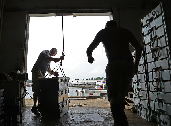 MIKE SPRINGER/Staff photo<br /> Joey Ciaramitaro prepares to lower fresh bait to the boat of Jon Mondello, right, after receiving Mondello's catch of lobsters Friday at Captain Joe & Sons in Gloucester.<br /> 8/17/2018