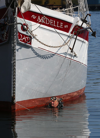 MIKE SPRINGER/Staff photo<br /> Harold Burnham comes up to the surface after inspecting the bottom of the schooner Ardele in Gloucester Harbor. The shipwright and skipper of the Ardele, Burnham learned SCUBA diving last year so he could conduct regular underwater inspections himself.