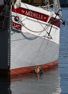 MIKE SPRINGER/Staff photo Harold Burnham comes up to the surface after inspecting the bottom of the schooner Ardele in Gloucester Harbor. The shipwright and skipper of the Ardele, Burnham learned SCUBA diving last year so he could conduct regular underwater inspections himself.