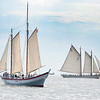 Gloucester:   The Schooner Ardelle left, and the American Eagle sail in open waters in the Parade of Sails Sunday morning off Eastern Point. Desi Smith/Gloucester Daily Times. September 2, 2012