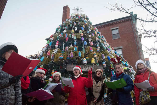 SAM GORESH/Staff photo. The Snowbirds sing Christmas carols at the Lobster Pot Christmas Tree Lighting in Police Station Plaza. 12/10/16