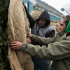 SAM GORESH/Staff photo. Derek Aptt (left) and Chris Paul (right) of CK Landscaping wrap trees for winter during a brief snow flurry in Rocky Neck. 12/15/16