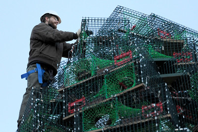TIM JEAN/Staff photo  Dave Brooks of Gloucester, secures the lobster traps on top of the Lobster Trap Christmas tree in downtown Gloucester. The tree will be light on Saturday, with new LED colorful lights.     12/4/18