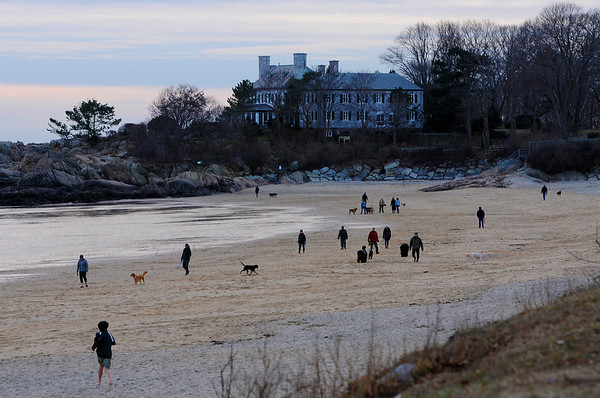 TIM JEAN/Staff photo<br /> <br /> Dog lovers enjoy Singing Beach during low tide on a mild winter day in Manchester-by the-Sea.  12/5/18