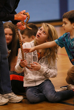 MIKE SPRINGER/Staff photo<br /> Twelve-year-old Kylah Plante and five-year-old Tripp Buotte, right, touch a corn snake during a special presentation on snakes Tuesday by the Cape Ann Vernal Pond Team at the Cape Ann YMCA in Gloucester. The event was one of a series of vacation-week activities scheduled at the YMCA.<br /> 2/20/2018