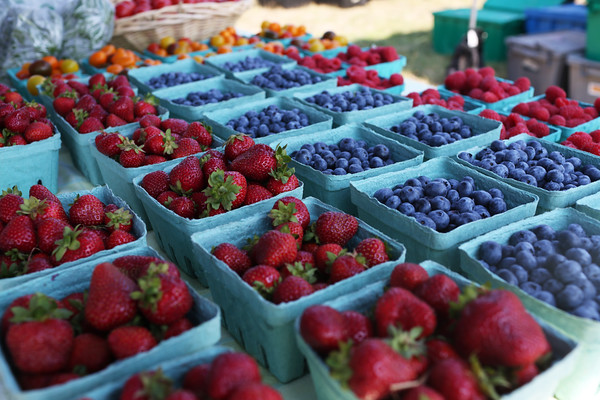 HADLEY GREEN/Staff photo<br /> Berries for sale from Marshall's Farm Stand at the Cape Ann Farmers Market at Stage Fort Park in Gloucester.<br /> <br /> 07/05/2018