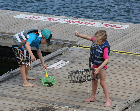 MIKE SPRINGER/Staff photo<br /> Eight-year-old Rylie Miller of Manchester scoops a crab up from the dock as his little sister Makayla, 6, prepares to throw the trap back into the water Thursday at Tuck's Point in Manchester.<br /> 7/26/2018