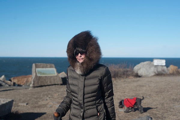 SAM GORESH/Staff photo. Linda McCartiston walks with her dog Clover at Halibut Point State Park. McCarltston said that she tries to make it to the park almost every day, and was happy to be out again despite the wind after the storms the past couple of days. 1/25/17