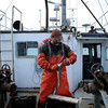 Captain Al Cottone guts haddock before bringing them to the market on his boat the Sabrina Maria as the ship makes its way back to port on Friday January 19, 2018. Photo by Joseph Prezioso