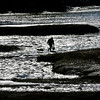 MIKE SPRINGER/Staff photo<br /> A clammer walks back to shore after gathering razor clams at low tide Friday on the Little River in Gloucester.<br /> 01/26/2018