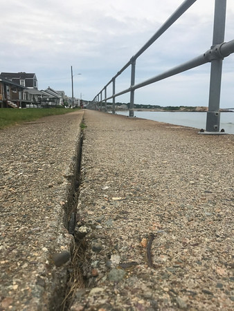 MARY MARKOS/Staff photo<br /> A crack can be seen running the center of the Long Beach seawall in Rockport. A town committee has been tasked with formulating palns to repair it.