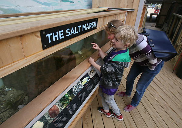 New Aquarium at Maritime Gloucester
