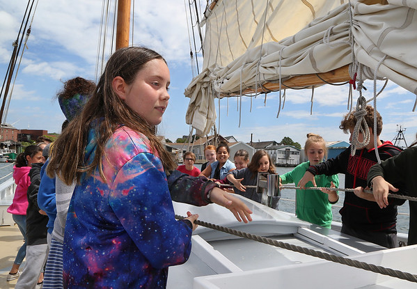 MIKE SPRINGER/Staff photo<br /> Fifth-grader Katy Aaron and a group of classmates from Plum Cove School hoist a sail on the schooner Ardelle during a marine science field trip Wednesday in Gloucester Harbor. The students were the fifth graders from all the city's elementary schools to take the year-end sailing trip, the climax of Maritime Gloucester's Ocean Explorers program which visits all the schools throughout the year to teach students about the marine ecosystem. On Wednesday's trip, the Plum Cove fifth graders took water samples at different depths and record data on temperature, salinity and other properties.<br /> 6/13/2018