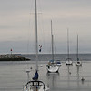 MIKE SPRINGER/Staff photo<br /> Sailboats are moored Tuesday in Rockport Harbor.<br /> 6/5/2018