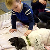 TIM JEAN/Staff photo<br /> Calvin Yukins, 3, left, and his sister Claire, 6, both of Manchester, pat 3 month puppies during a meet and greet with Cape Ann Animal Aid at the Manchester By-The-Sea Public Library. The shelter has several puppies available for adoption, and had volunteers on hand to explain the process. 3/25/17