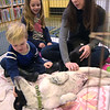TIM JEAN/Staff photo<br /> Christina Yukins, of Manchester, and her children Calvin, 3, left, and Claire, 6, pat 3 month puppies during a meet and greet with Cape Ann Animal Aid at the Manchester By-The-Sea Public Library.  3/25/17