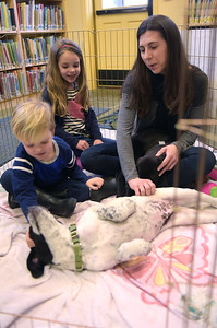 TIM JEAN/Staff photo Christina Yukins, of Manchester, and her children Calvin, 3, left, and Claire, 6, pat 3 month puppies during a meet and greet with Cape Ann Animal Aid at the Manchester By-The-Sea Public Library.  3/25/17