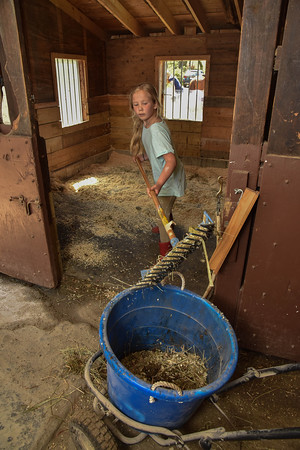 Desi Smith/Staff photo.   Cayla O'Sullivan 8, of Rockport helps clean out one of the stalls at Seaview Farm's Saturday morning, were her older sister Morgan 11, takes riding leasons.   May 14,2016