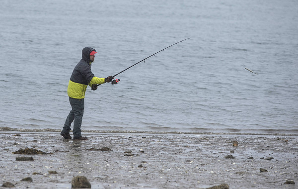 """Desi Smith/Staff photo.    (Cast Away)    Andrew Posfai of Gloucester casts off in hopes to reel in a striper,which he called """"hold overs"""" from last year that haven't migrated down, Thursday afternoon behind the Gloucester High School."""