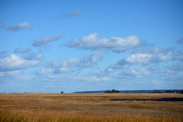 Great Marsh Restoration Grant