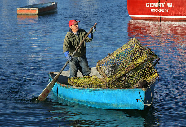 Bringing in the Lobster Traps